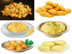Cuisiner les pommes de terre nouvelles cuisines et - Cuisiner les girolles fraiches ...