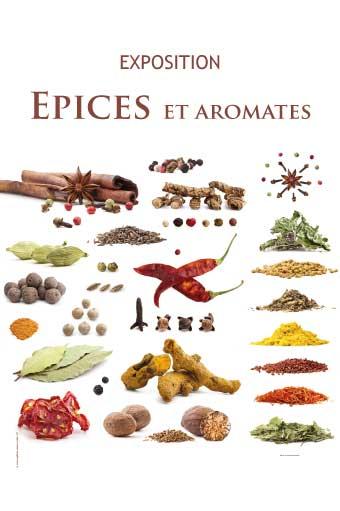 Epices-aromates-1