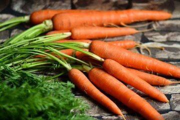Flan de carottes muscade