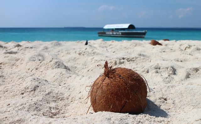 Le Mont blanc à la noix de coco