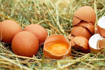 séparer les blancs des jaunes d'œufs