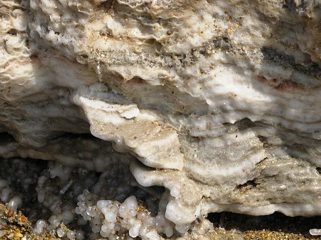 Les sels minéraux et oligo-éléments