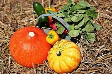Les Légumes, farinages et fruits
